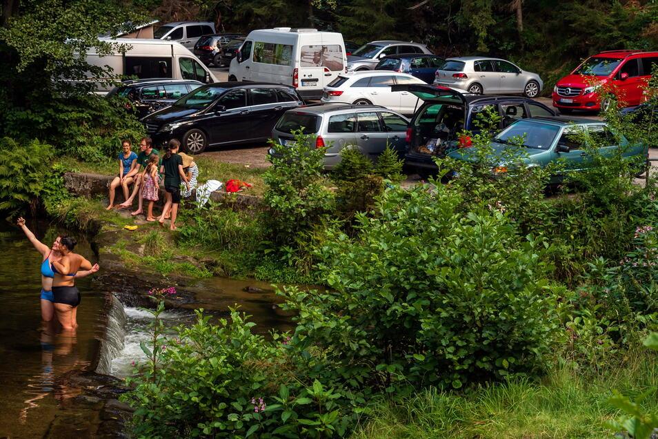 Voller Parkplatz an der Neumannmühle im Kirnitzschtal: Das Übernachten im Auto ist hier im Nationalparkgebiet nicht gestattet, das Baden in der Kirnitzsch übrigens ebenfalls nicht.