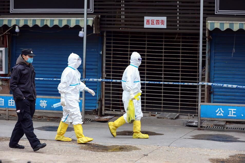 Arbeiter in Schutzkleidung tragen eine Tasche in der sich ein Riesensalamander befindet, der vom Huanan Seafood Market entkommen sein soll.