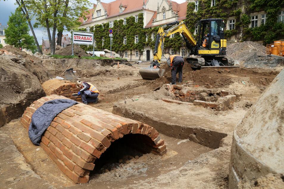 Eine große Überraschung waren die Grüfte im Bereich vor Klosterkirche und 1. Grundschule. Insgesamt wurden in Riesa etwa 180 Gräber gefunden.