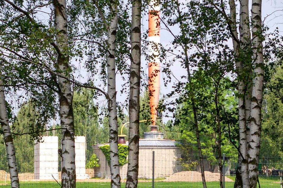 Am Sockel des Stahlrohrs wird gearbeitet. Das ist auch durch die Baumreihe zu erkennen. Was dort gemacht wird, will der Besitzer der Antenne nicht verraten.
