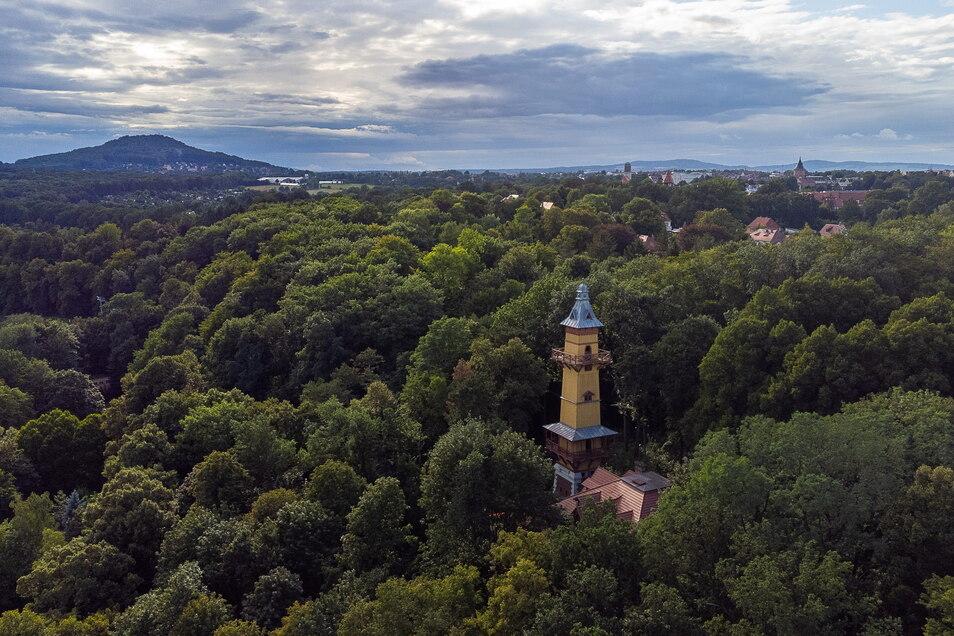 Aus der Luft sieht man am besten, dass Weinberghaus und -turm heute mitten im Wald stehen.