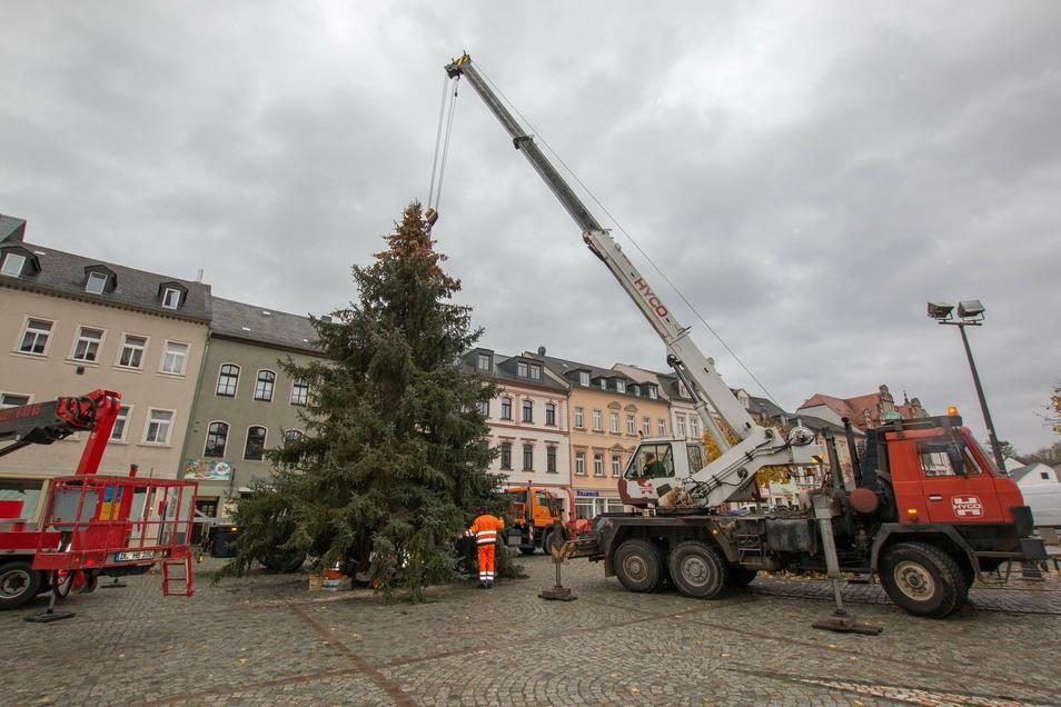 Das Aufstellen des Baumes auf dem Waldheimer Markt funktionierte problemlos.