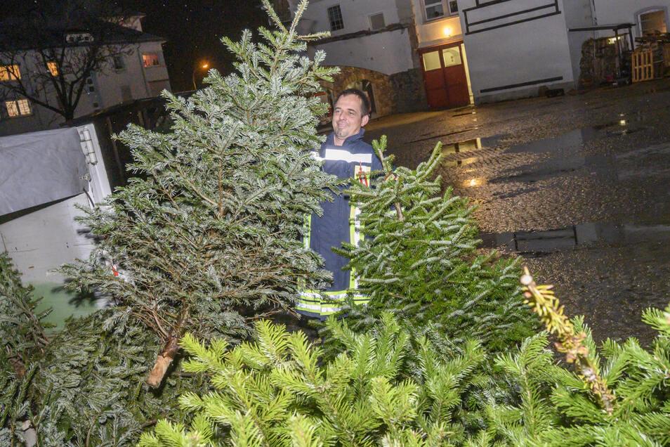 Stachlige Angelegenheit: Raphael Jantos von der Feuerwehr Riesa-Stadt nimmt an der Pausitzer Straße ausgediente Weihnachtsbäume entgegen. Am 18. Januar werden sie verbrannt.