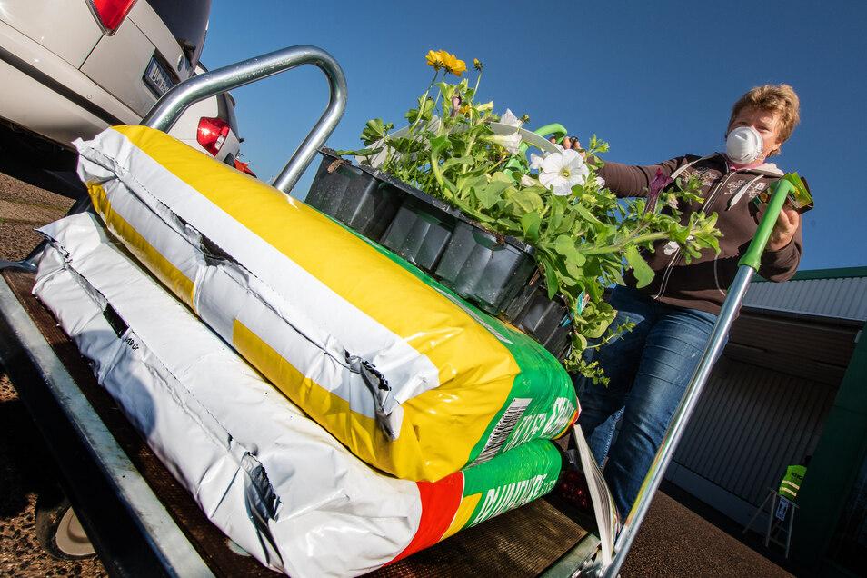Heike Uhlig aus Kriebstein kauft beim RHG Baumarkt Pflanzen für das Grundstück.