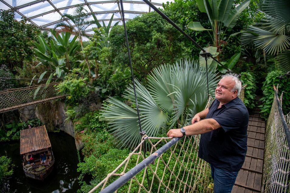 Von einem Baumkronenpfad aus blickt Jörg Junhold, Direktor des Zoo Leipzig, in das Gondwanaland. In der Halle entfaltet sich seit nun zehn Jahren ein tropischer Regenwald.