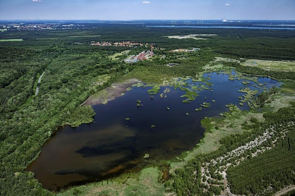 Das Luftbild der Region um die Energiefabrik Knappenrode entstand im Juni dieses Jahres. Im Hintergrund der Scheibesee und (dahinter) der Dreiweiberner See.