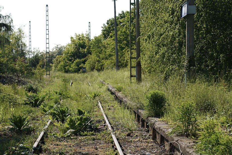 Stillgelegte Bahnstrecken Deutschland