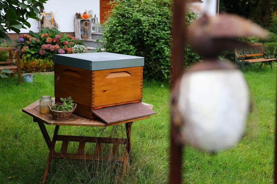 Auch drei Bienenvölker gehören zum Gartenparadies. Diese betreut der älteste Sohn Sebastian. Und so gibt es immer eigenen Honig im Haus.