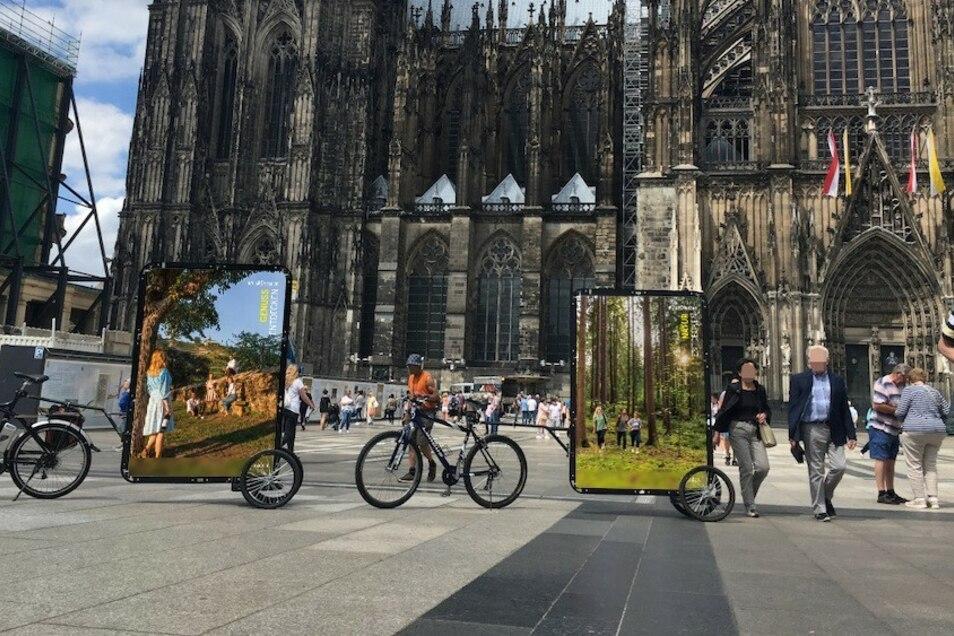 Mit diesen fahrenden Plakaten will Dresden in großen deutschen Innenstädten für sich werben.