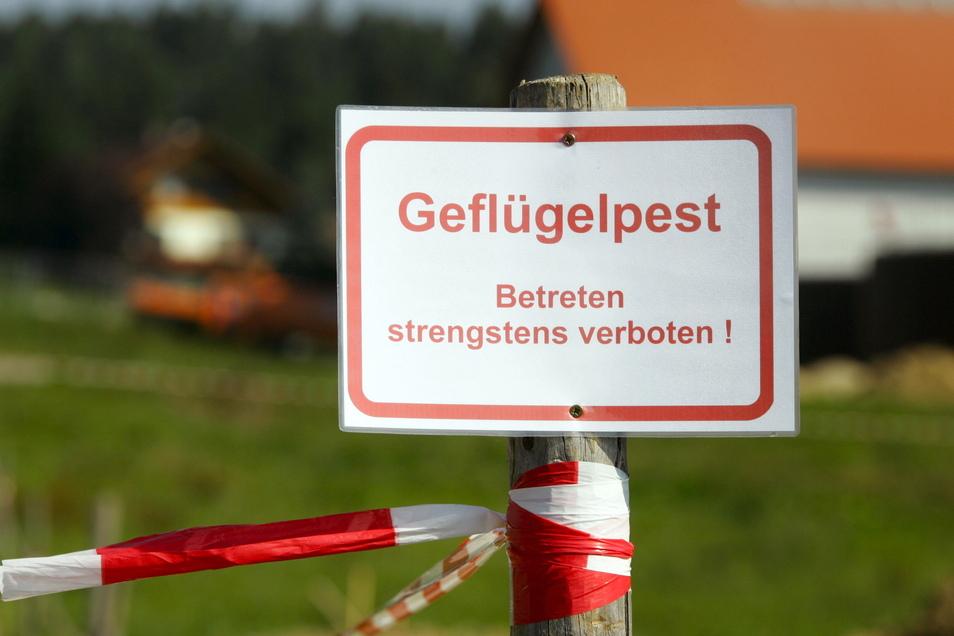 Ein Schild mit der Aufschrift «Geflügelpest - Betreten strengstens verboten!» steht an der Zufahrt zu einem Geflügelzuchthof.