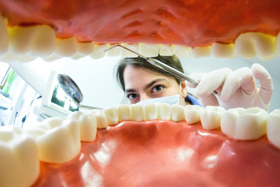 Lieber öfter zum Zahnarzt: Ist hier etwas faul, kann sich das auf den restlichen Körper auswirken.