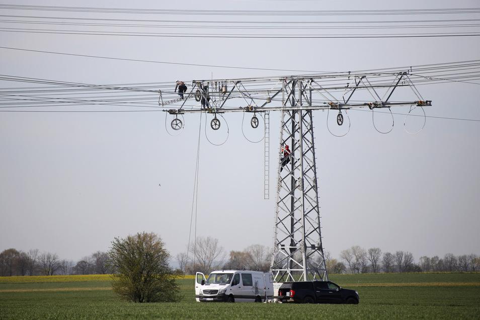 Die Enso errichtet derzeit neue Freileitungen zwischen Skassa und Nünchritz.