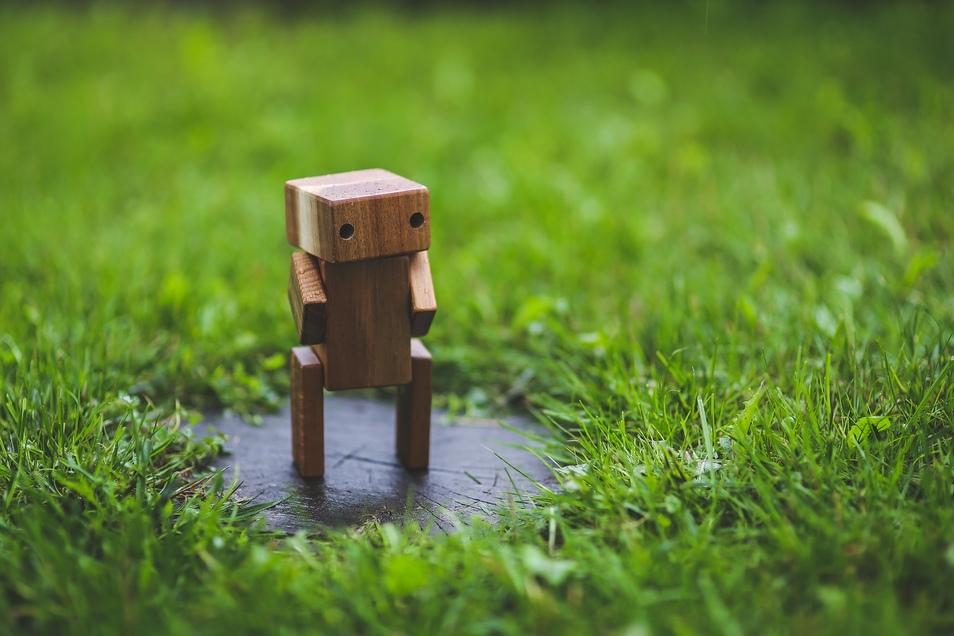Ganz ohne Überwachung durch einen Gärtner sollte ein Rasenroboter nicht arbeiten.