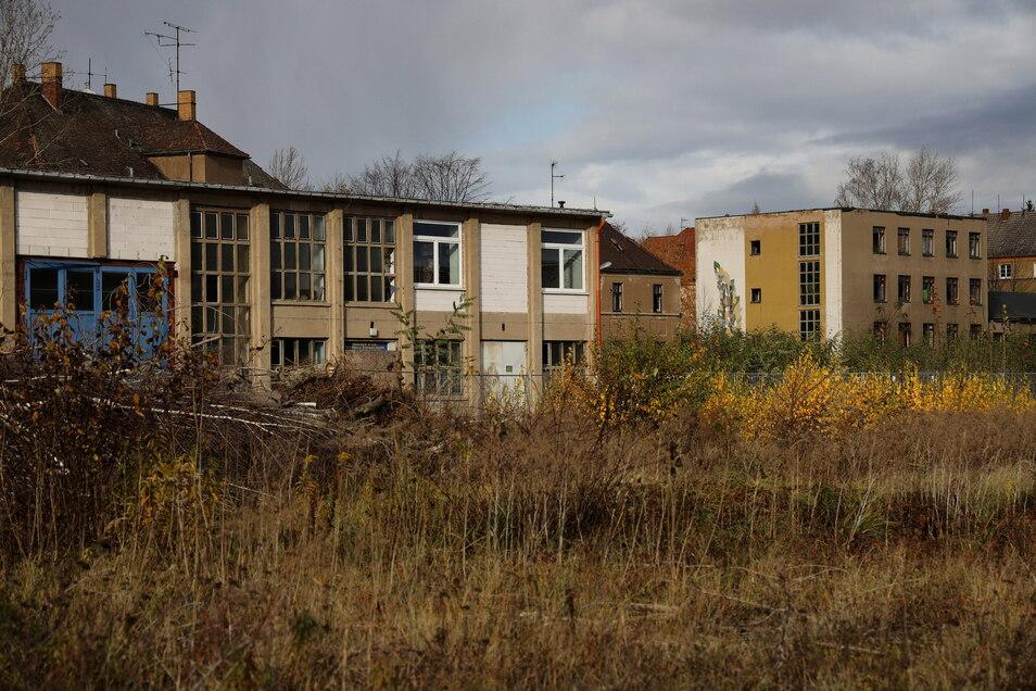 Auf den Gelände des ehemaligen Aropharm-Werks in Riesa soll eine Solarfläche entstehen.