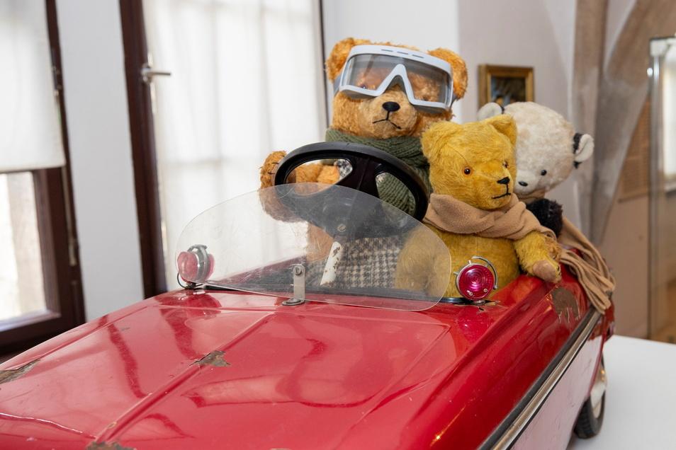 Ein Ausflug ins Stadtmuseum nach Pirna lohnt wieder: Seit der Wiedereröffnung am 6. April ist hier eine neue Teddy-Schau zu sehen.