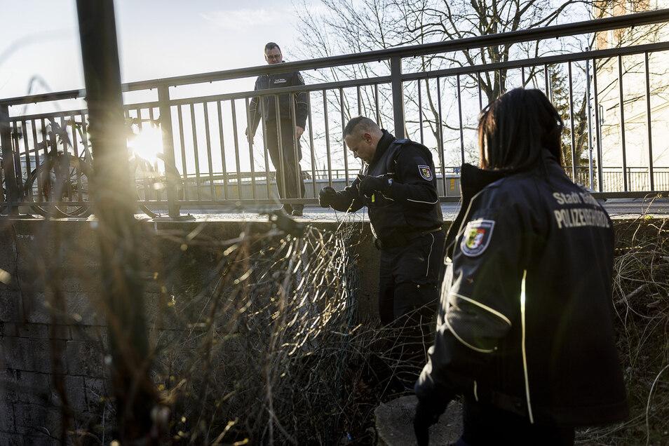 Am Blockhaus ist der Zaun heruntergetreten. Jan Tokarski (Mitte) richtet ihn im Beisein seiner beiden Kollegen provisorisch auf.