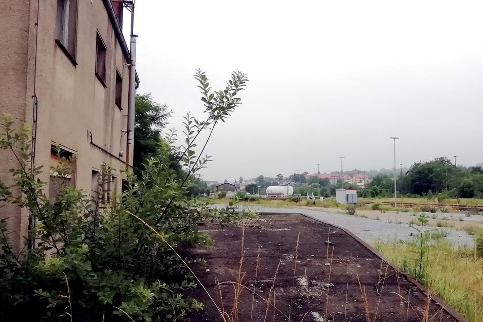 Einen Teil der Anlagen auf dem Gelände hat die Deutsche Bahn abgerissen. Frühere Werkstattgebäude zum Beispiel stehen noch. Die Bahn prüft derzeit den Verkauf des Areals.