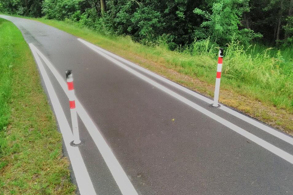 Diese Poller am Radweg sind ebenfalls mit Farbe besprüht worden.