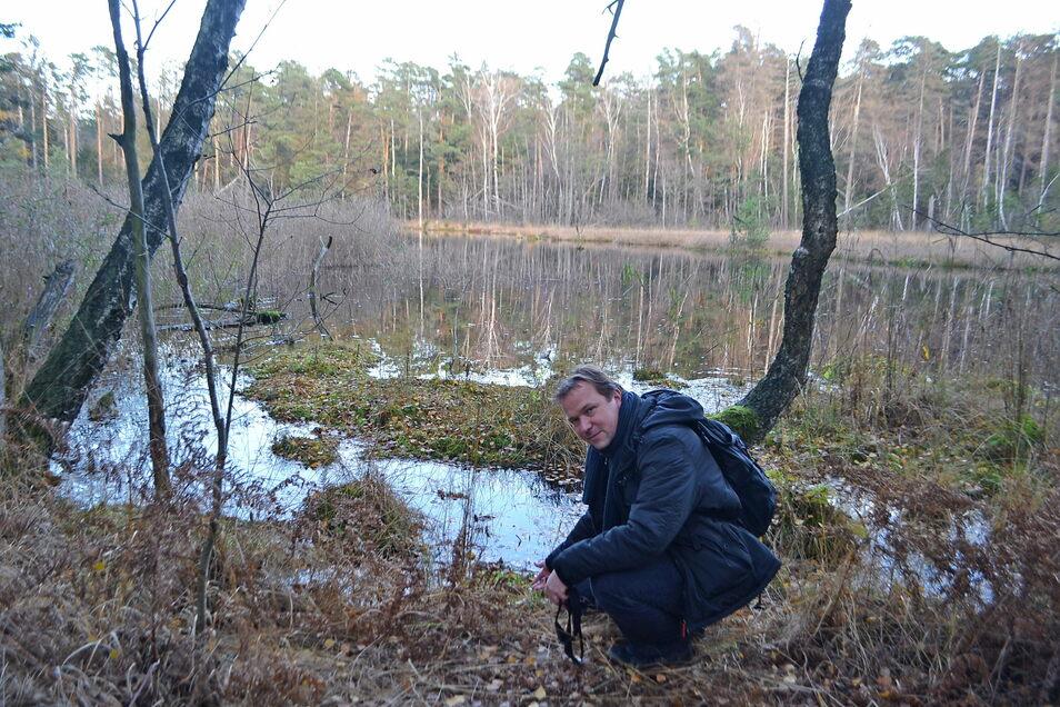 Bald nur noch eine Brennnesselwüste? Holger Oertel an einer offenen Wasserfläche im Waldmoor bei Großdittmannsdorf.