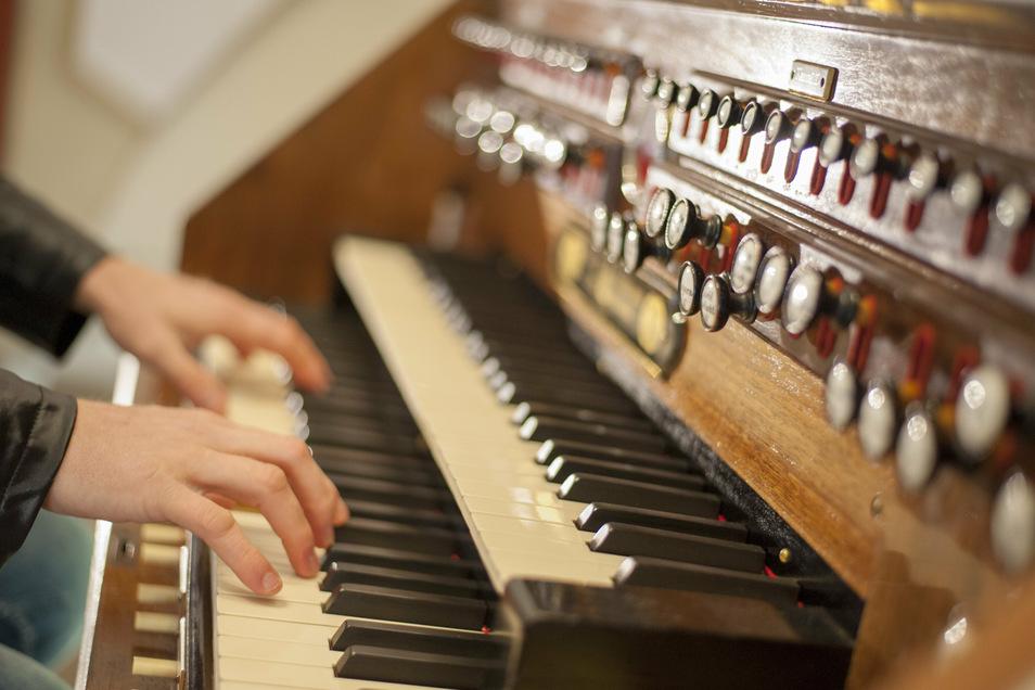 Am Wochenende kann man dem Organisten Nico Wieditz in vier sehr persönlichen Konzerten beim Spielen direkt auf die Finger schauen.