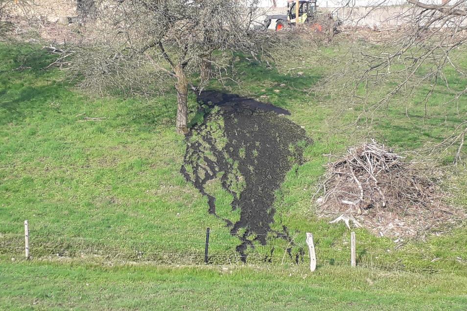 Spuren am Hang in Langenwolmsdorf. Einwohner sehen die Bauarbeiten an der früheren Mastanlage skeptisch.