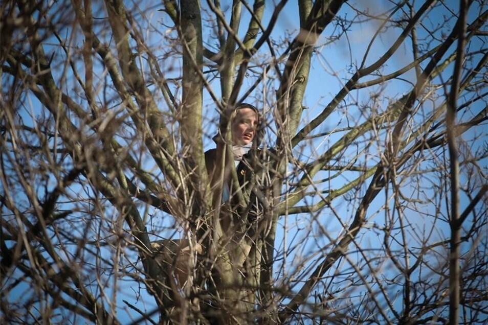 Eine Demonstrantin kletterte in einen Baum. Das störte allerdings den Eigentümer nicht, auf dem Gelände erste Abrissarbeiten zu beginnen.