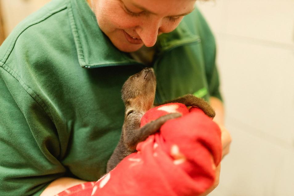 """""""So, meine kleine Maus"""": Pflegerin Nicole Brzoska hat Lele längst in ihr Herz geschlossen."""