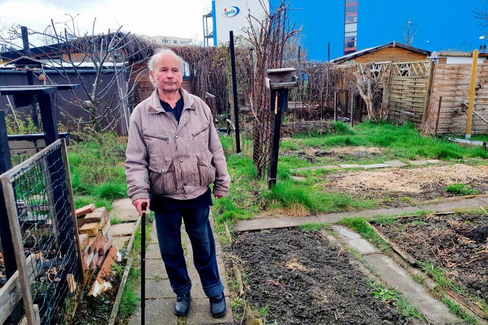 Ullrich Hauptmann verlässt seine Parzelle im Kleingartenverein Nautelweg nur unter Protest.