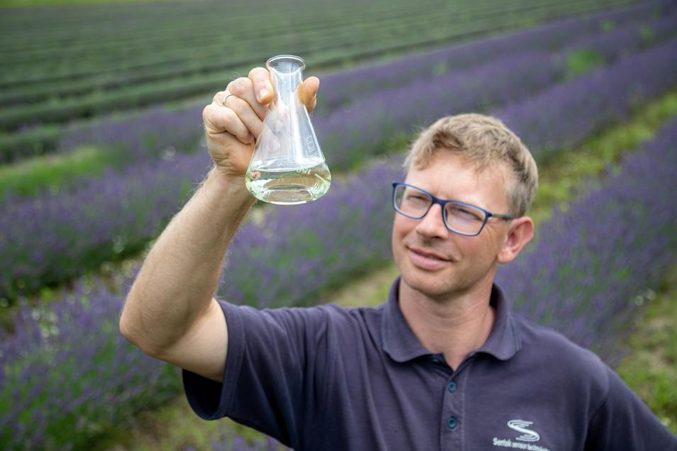Andreas Graf hat Lavendelöl als ein zusätzliches Produkt seiner Agrargenossenschaft entdeckt. Die Blüte ist inzwischen vorbei, kommt aber nächsten Juni wieder.