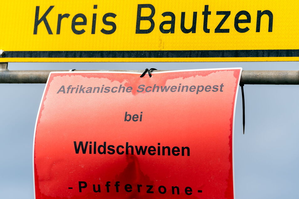 Unter dem Ortsschild von Weißenberg wird auf die Gefahr durch die Afrikanische Schweinepest hingewiesen. Der Osten des Landkreises Bautzen gilt als sogenannte Pufferzone.