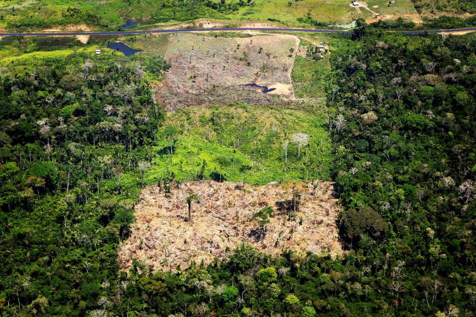 Abgeholztes Gebiet im Amazonas-Regenwald in Acre, Brasilien.