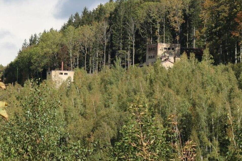 Das sind die Überreste einer Uranfabrik. Hier wurde das Erz zerkleinert.