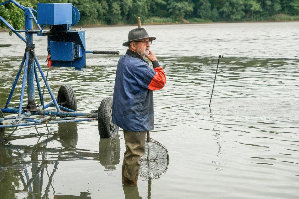 Uwe Ringpfeil, bis 2013 Chef der Teichwirtschaft, beobachtet das Abfischen und fasst selbst mit an.