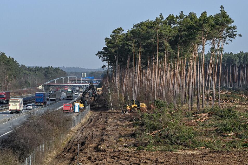 Die Arbeiten für eine provisorische Autobahnabfahrt zum Baugelände der Tesla Gigafactory haben Ende Februar auf dem östlichen Berliner Ring der Autobahn 10 begonnen. Auf der rechten Fahrspur soll eine Abfahrt zum Tesla-Werk entstehen.