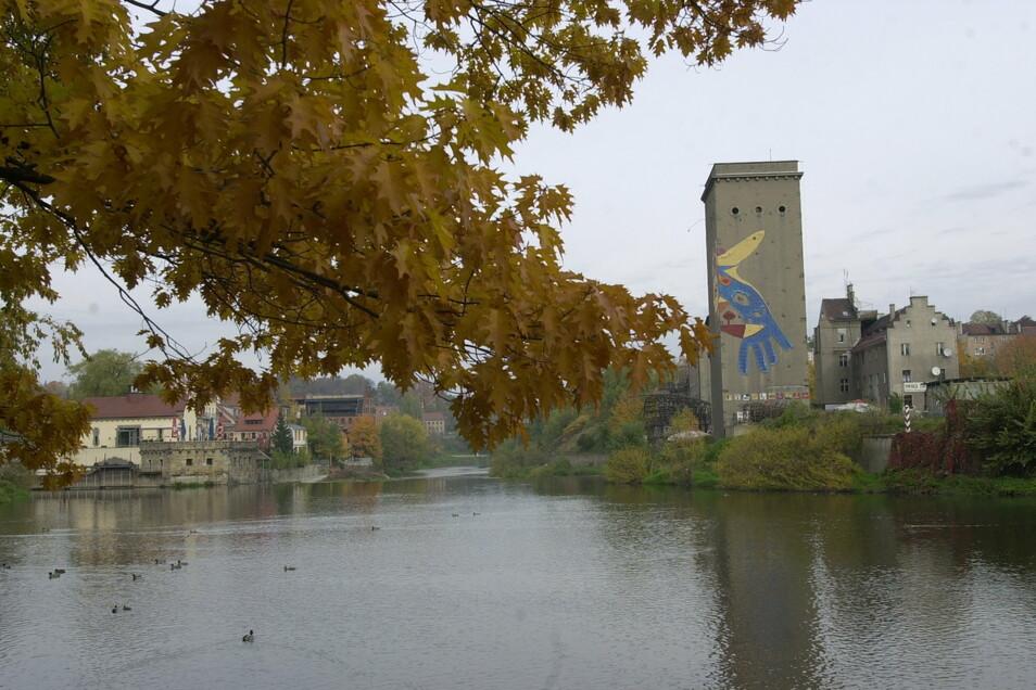 Blick über die Neiße in Richtung Dreiradenmühle und auf die polnische Uferstraße