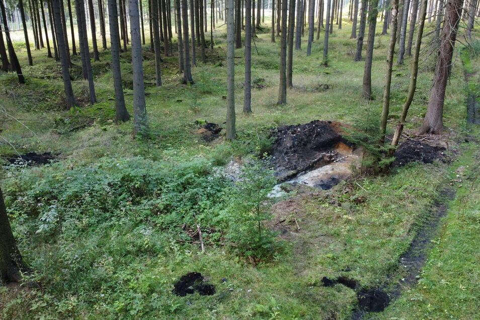 Direkt unter der Oberfläche wird die Erde schwarz. Das verrät den Archäologen, dass sie hier einen Kohlenmeiler gefunden haben.