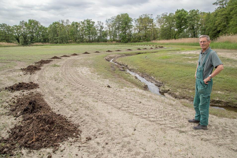Statt Wasser Stalldung. Rüdiger Richter nutzt mit seiner Teichwirtschaft Kreba die Trockenheit dafür aus, um mit Haufen von Stalldung beim Anstauen für Futter für die neue Fischbrut zu sorgen.