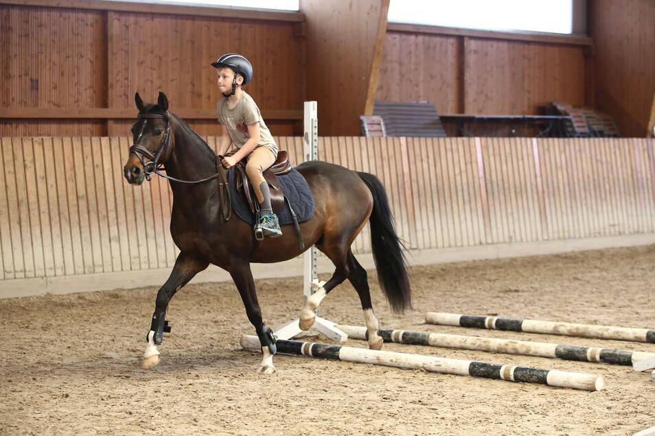 Richard ist praktisch im Pferdestall aufgewachsen.