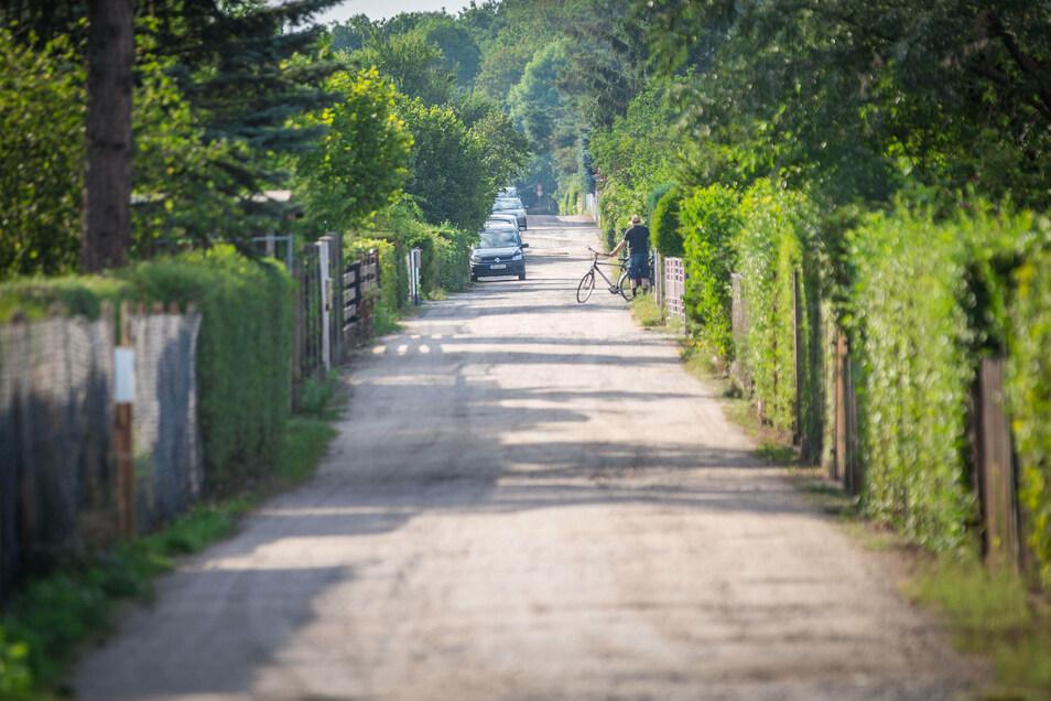 Breite Straßen, Autos, Nadelbäume: Wie viele Besonderheiten verträgt die Kleingartenwelt?