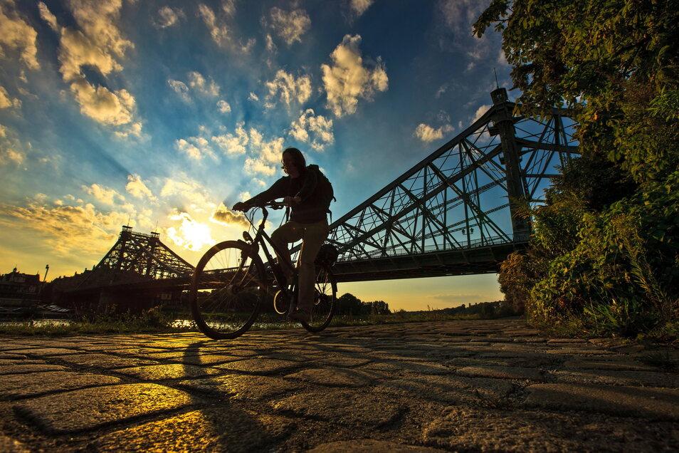 Radfahrer auf dem Elberadweg in Dresden - die Route war laut der ADFC-Radreiseanalyse 2020 am beliebtesten.