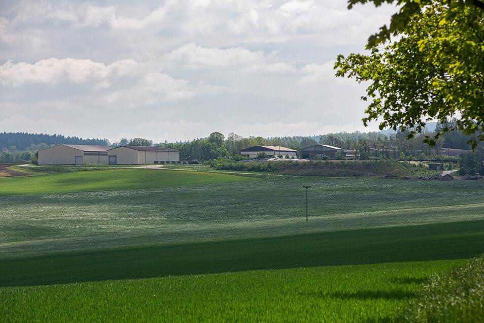 Ein Blick auf die Jungviehställe in Sadisdorf. Hier soll das Güllelager erweitert werden. Darum gibt es Diskussionen.