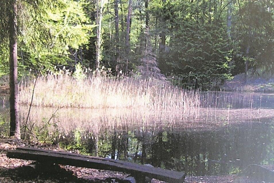 Bank am Ufer des Märchensees.