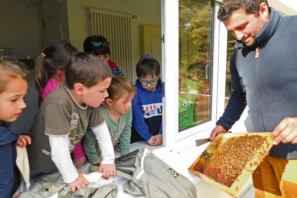 """Imker Sebastian Habel brachte nicht nur das Bienenvolk samt Königin in das DRK-Kinderhaus """"Sonnenschein"""", sondern er erläuterte den Kindern auch alles, was er vor Ort machte. Sogar zehn Imker-Schutzanzüge für Kinder und weiteres Zubehör hatte er mitgebrac"""