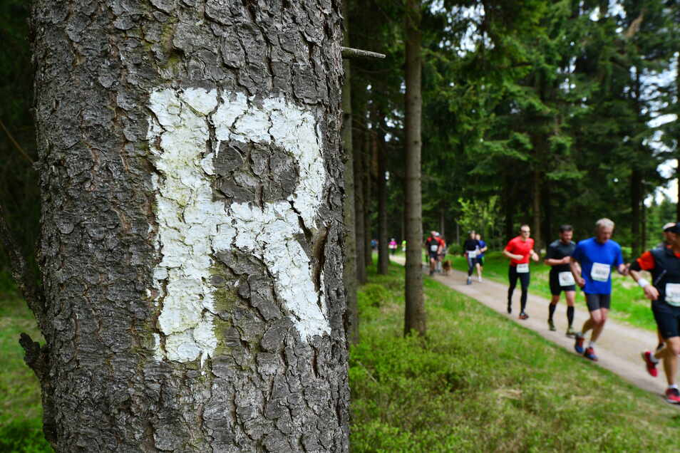 Der Buchstabe sagt alles und weist den Weg, auch beim Rennsteiglauf wieder an diesem Wochenende.