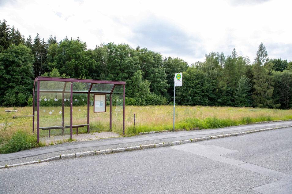 Auf der Wiese hinter der Bushaltestelle an der Pestalozzistraße in Sebnitz ist Platz für fünf Häuser.