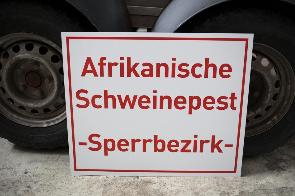 Auch im Landkreis Bautzen rüstet man sich gegen die Schweinepest.