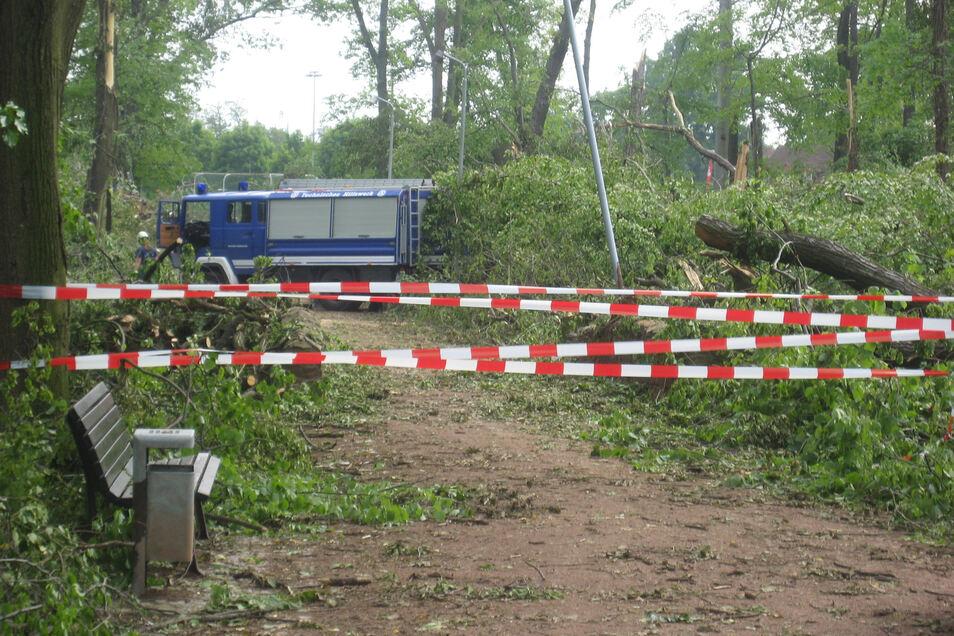 Völlig verwüstet wurde der Großenhainer Stadtpark. Fast alle Wege waren blockiert. Hier war das Technische Hilfswerk in Aktion.
