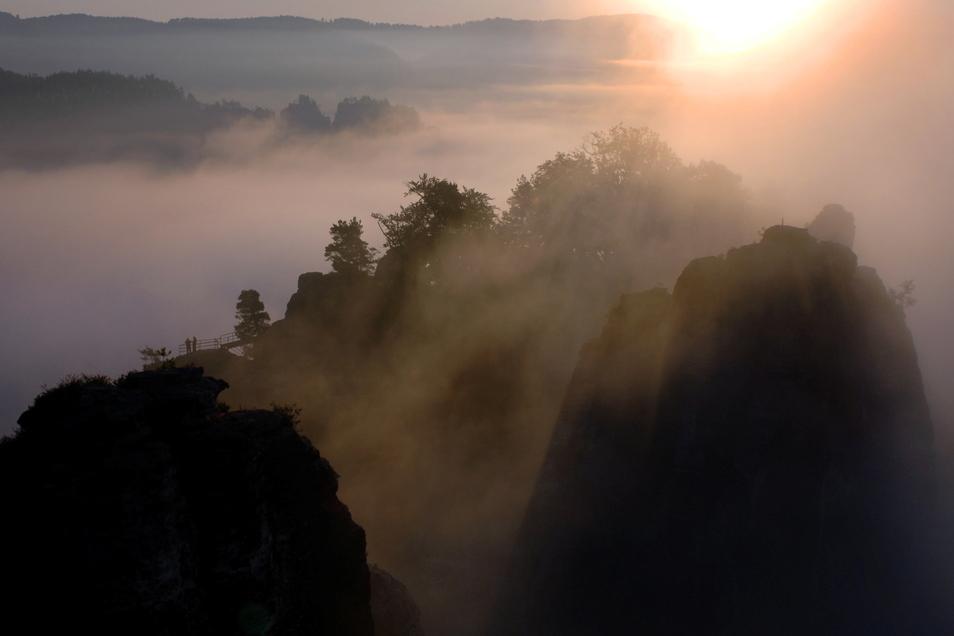 Morgennebel hüllt den Basteifelsen in der Sächsischen Schweiz ein.