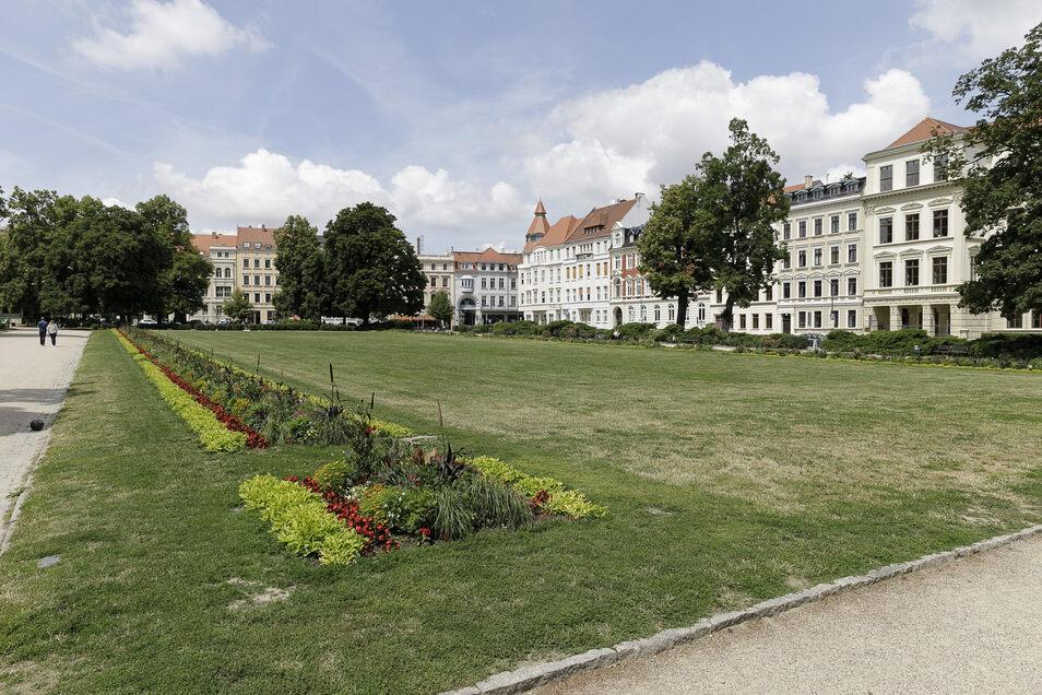 Der Wilhelmsplatz in Görlitz: Sport und Spiel sind laut Grünflächensatzung gestattet.