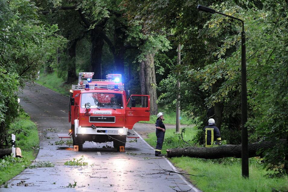 Vor Jahren musste die Feuerwehr in der Kastanienallee die Schäden nach einem Sturm beseitigen. Nun stehen Fällarbeiten an.